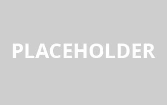 placeholder_314